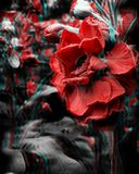 Trippy Red Flowers. Psychedelic trippy red flowers in nature Royalty Free Stock Image