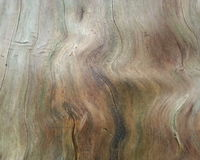 Trippy Wood Texture. Trippy and Unique Forest Wood Texture Royalty Free Stock Images