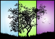 Triptych. Black tree on a colorful background Royalty Free Stock Photography