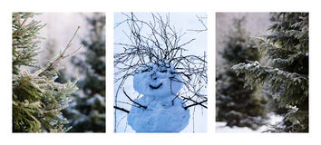 Triptych - Christmas Trees And Snowman Stock Photos