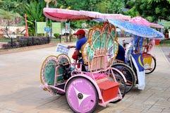 Trishaw i gatan av Melaka Arkivfoton