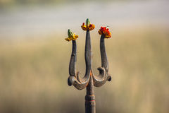 Trishul : Hindu sign Royalty Free Stock Image