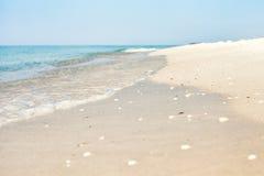 tristan的海岛 免版税库存图片