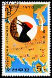 Tristram\'s Woodpecker (Dryocopus javensis richardsi), Woodpecker Preservation serie, circa 1978. MOSCOW, RUSSIA - FEBRUARY 21, 2019: A stamp printed in Korea royalty free stock images