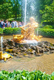 Triton Fountain in Peterhof Park Royalty Free Stock Photo
