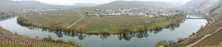 Trittenheim and the Mosel Royalty Free Stock Images