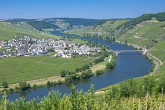 Trittenheim,Mosel River,Mosel valleyGermany Stock Photo