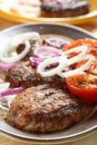 Triture com tomates e cebola foto de stock