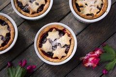 Triture a torta nos ramekins Imagens de Stock Royalty Free