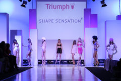 Triumph clothing collection Royalty Free Stock Image