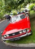 Triumph Stag royalty free stock photo