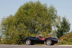 Triumph TR in the nature stock photo