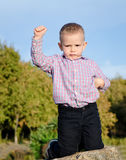 Triumphant little boy Royalty Free Stock Images