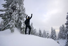 Triumphant person on top in winter Stock Photos