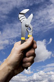 Triumphant tool man Royalty Free Stock Photos