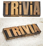 Trivia word in wood type Stock Photography