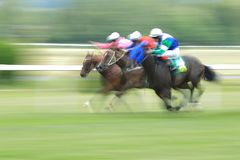 Horse racing in Chuchle. TRM prix in horse racing in Prague held on 25.6.2018, Czech Republic royalty free stock photo