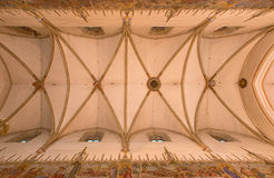 Trnava - The ceiling in nave of gpthic St. Nicholas church. Stock Photography