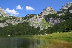 Trnovacko jezero黑山 库存照片