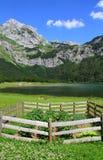 Trnovacko jezero Montenegro Royaltyfri Fotografi