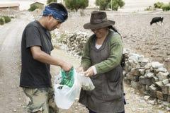 A troca das folhas da coca é um cumprimento diário como a agitação das mãos Fotografia de Stock Royalty Free