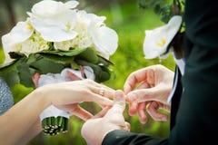 Troca dos anéis Fotografia de Stock Royalty Free