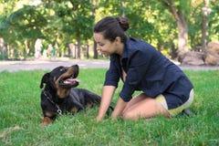 Trocas de carícias bonitas da mulher um cão Vista de acima Imagem de Stock Royalty Free