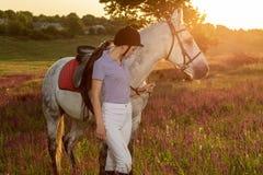 Trocas de carícias da moça do jóquei e aperto do cavalo branco no por do sol da noite Alargamento de Sun Fotos de Stock Royalty Free
