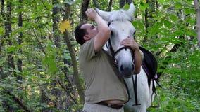 Trocas de carícias de sorriso consideráveis do homem seu cavalo bonito video estoque