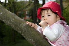 trochę śliczna dziewczyna Fotografia Stock