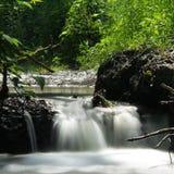 trochę creek fotografia royalty free