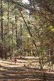 trochę duży lasowa dziewczyna Zdjęcia Royalty Free