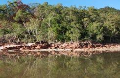 trochę ramsay hinchinbrook podpalana wyspa zdjęcie stock