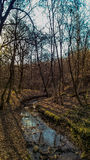 trochę creek Zdjęcia Stock
