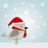 trochę ptasi christmass Zdjęcia Stock