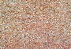 Trocinowy tekstury tło Piękna tarcica Fotografia Stock