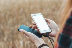 Trocista acima do telefone e do banco na mão de uma menina, na perspectiva de um campo amarelo fotos de stock royalty free