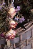 Trockenblumen in einem Korb auf lokalisiertem Hintergrund mit Reflexion Lizenzfreies Stockfoto