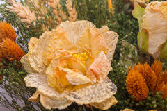 Trockenblumen im Vordergrund, Blumensträuße von Trockenblumen, Blumenanordnung Lizenzfreie Stockfotos