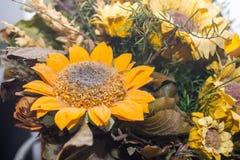 Trockenblumen im Vordergrund, Blumensträuße von Trockenblumen, Blumenanordnung Lizenzfreie Stockfotografie