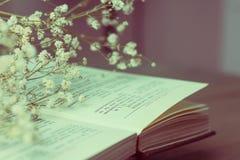 Trockenblumen und Buch Lizenzfreies Stockfoto