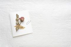 Trockenblumen von Rosen auf einem Weißbuch Rosa gelb Stockfotografie