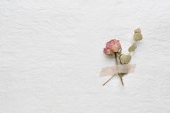 Trockenblumen von Rosen auf einem Weißbuch Rosa gelb Stockbilder