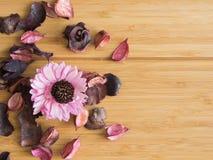 Trockenblumengesteck für die Entspannung Lizenzfreie Stockbilder