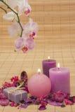 Trockenblumengesteck mit Kerzen und Orchidee Stockbild