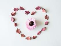 Trockenblumengesteckherz Stockbild