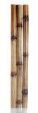 Trockene Bambussteuerknüppel Stockbild