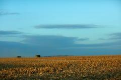 Trockene Bauernhofstoppel und entfernte Erntemaschinerie Stockbild