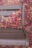 Trockene Blätter des Herbstes und ein hölzerner leerer Stuhl stockfotografie