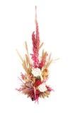 Trockene Blumen Lizenzfreie Stockbilder